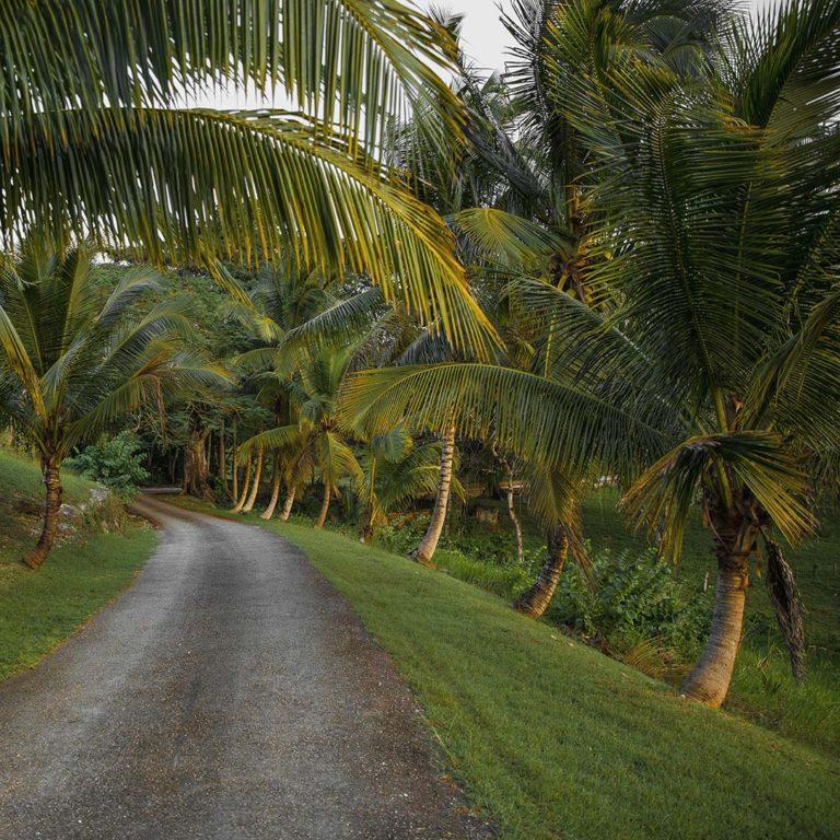 Caribbean island Jamaica